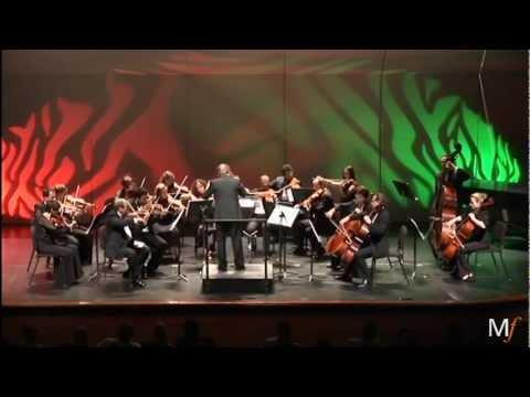 Alexander Borodin  Nocturne from String Quartet No2, D Major