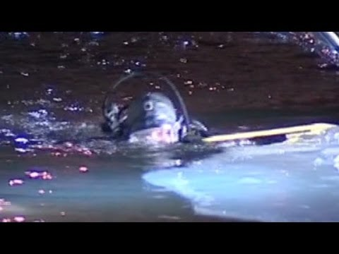Police dive into icy Chicago river after 3 fall in