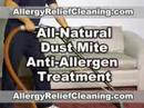Dust Mite Treatment - All Natural