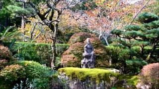 2017年の大河ドラマ主人公・井伊直虎ゆかりの寺であり、 井伊家千年の歴...
