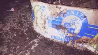 видео Борьба с клопами, с муровьями: 10 советов