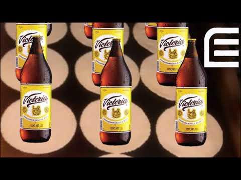 Los Estrambóticos - Me Enamoré En Cola/La Cerveza y El Dolor (VIVE LATINO 2019 VERSIÓN)