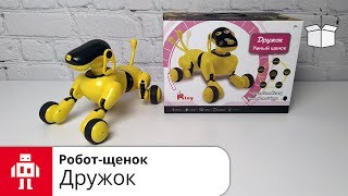Робот-щенок Дружок//Интеллектуальная собака-робот с голосовым управлением на русском языке