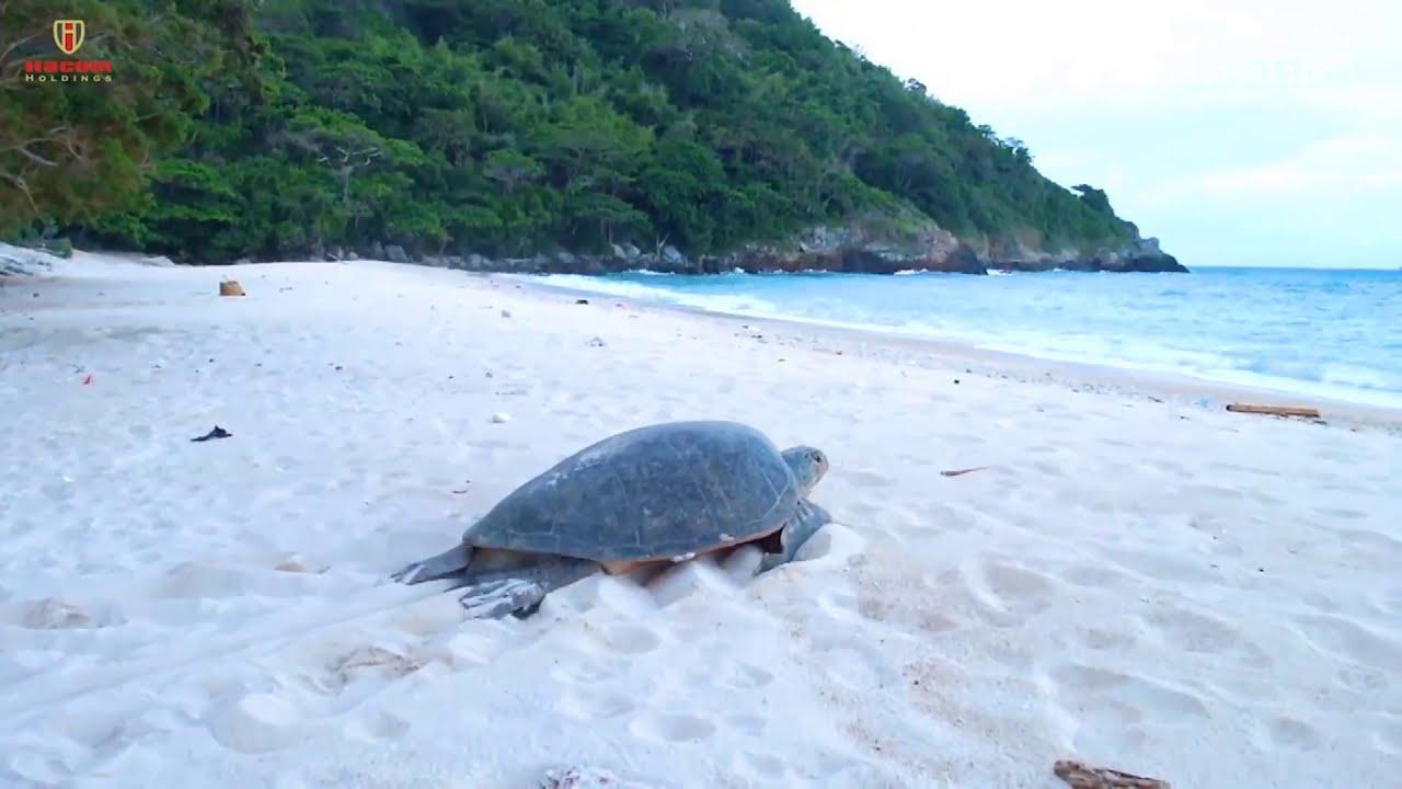 Tiềm năng đầu tư bất động sản Ninh Thuận 2020