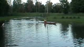 Guillemot Night Heron First Paddle