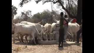Kraina plemienia Dinka: Sudan Południowy