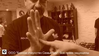 Коротко о главном-1. Даньтянь на ладони.Мастер Алекс Скалозуб. Илицюань