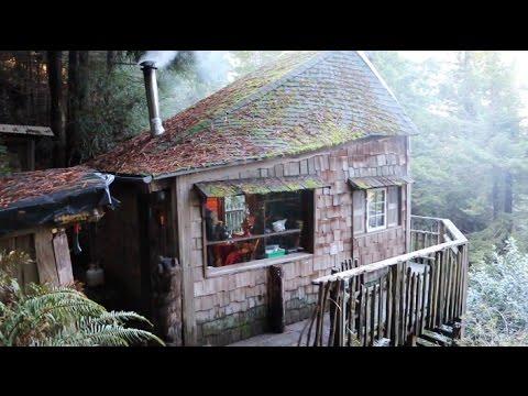 Primitive Cabin in the Big Woods
