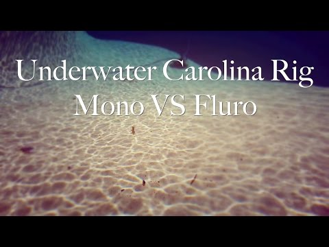 Underwater Carolina Rig - Mono VS Fluro