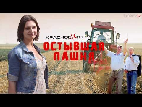 Остывшая пашня. Серафима Двуреченская.