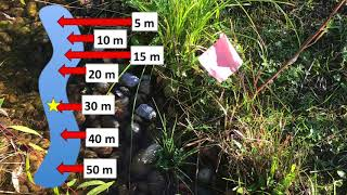 Dissolved Gas Transport in Streams