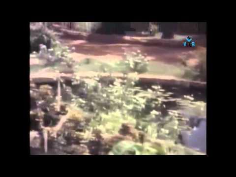 Aakali Rajyam Telugu Movie : O Mahatma Song