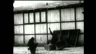 Chimpanzee Insight (Kohler Study Footage)