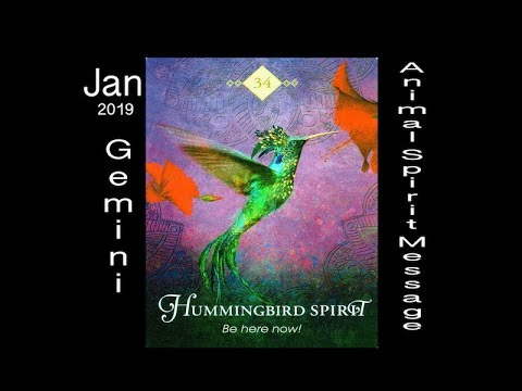 GEMINI SPIRIT ANIMAL MESSAGE/JANUARY, 2019 HAPPY NEW YEAR!!!