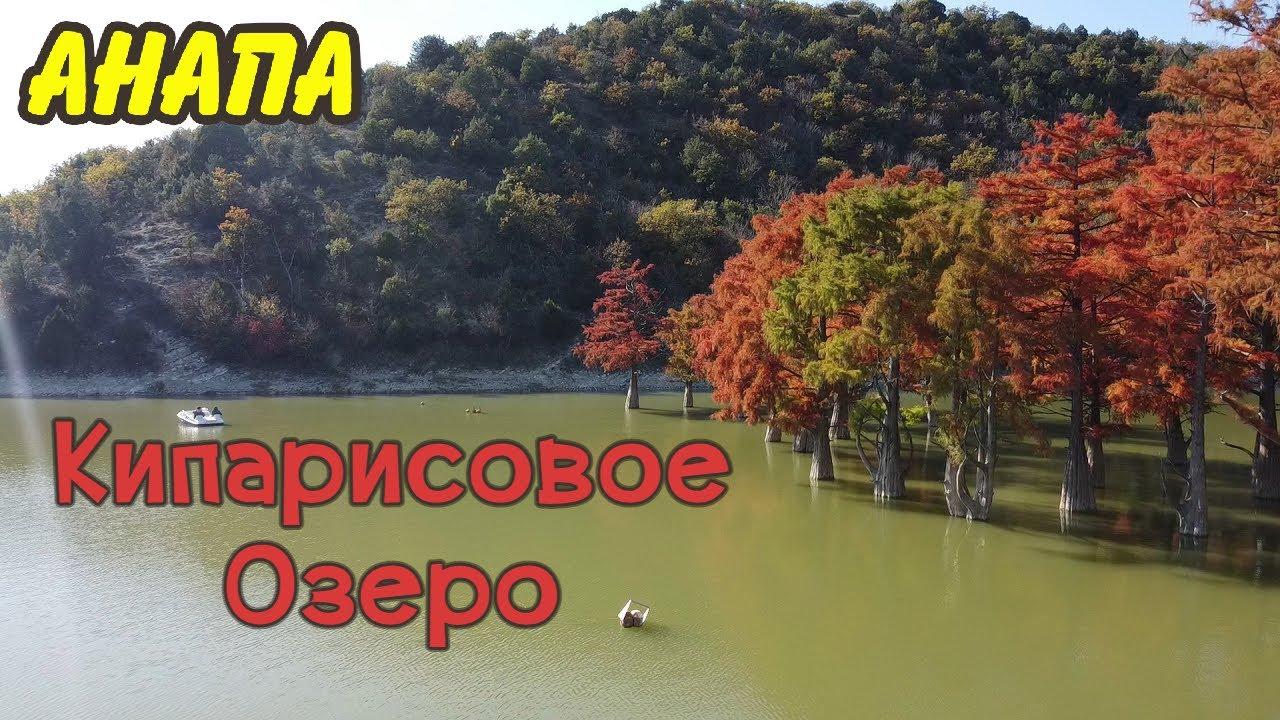 Анапа | Кипарисовое Озеро в Сукко | Красные кипарисы в октябре | Family Sea