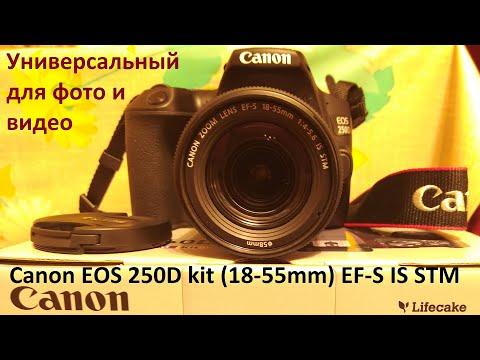 Зеркальный фотоаппарат Canon EOS 250D Kit 18 55mm EF-S IS STM – универсальный для фото и видео
