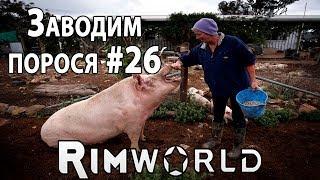 RimWorld - прохождение. Нашествие волков и разбираемся с одомашниванием животных #26