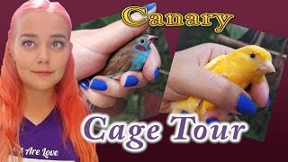 Canary & Finch Cage Tour
