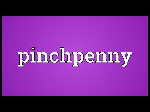 Header of pinchpenny