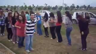 رقصة البطريق في فرنسا و رقص رائع PINGUIN DANCE