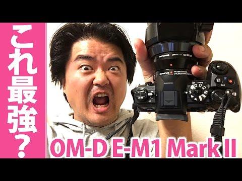 驚きのAF性能!OM-D E-M1 Mark II オリンパスの一眼は化物か!? 超望遠の高速連写でここまでカワセミのホバリングに食らいついた