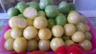 Супер закуска на зиму за 20 мин. из овощного физалиса,  зеленых помидоры, перца ...