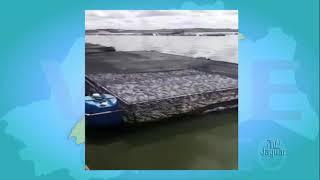 Castanhão registra a perca total da produção de pescado