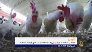 حملة لمقاطعة شراء البيض والبطاطا بالأردن