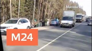 Смотреть видео СК возбудил уголовное дело по факту ДТП с участием детей в Пушкинском районе - Москва 24 онлайн