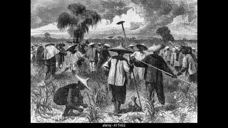 Jamaican Chinese community part 3
