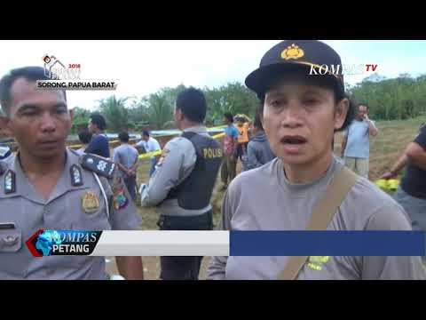 Warga Bunuh 292 Ekor Buaya di Sorong