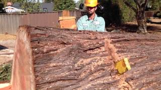 AWESOME Big Redwood Removal and Mill Job