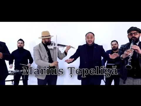 Marius Tepeliga - Lautarii imi fac placerea