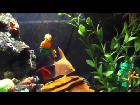 Lego aquaman in the fish tank youtube for Fish tank youtube