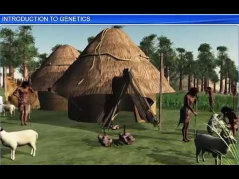 CBSE Class 12 Biology, Principles of Inheritance and Variation-11, Introduction to Genetics