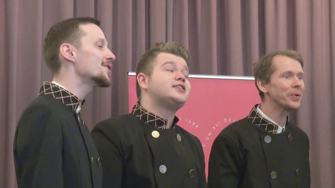 "00073 LVU vokālais ansamblis ""Dancis"""