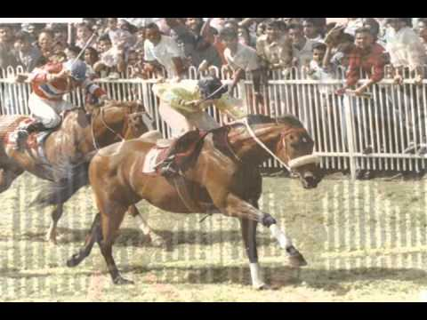 Mauritian Horseracing Legends...old Is Gold!!!