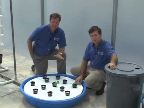 Hydroponics - Floating Systems