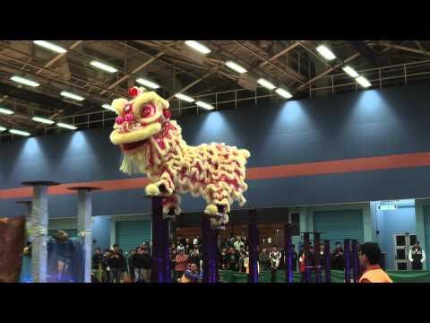 Hong Kong Open Dragon Lion Dance Competition 2011 - Champion