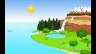 The Water Cycle Lesson | Learn about The Water Cycle