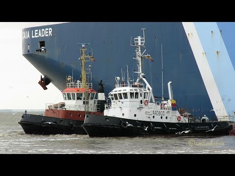 car carrier GAIA LEADER 9V9650 IMO 9536818 inbound Emden 3 tugs assist meets many trawlers