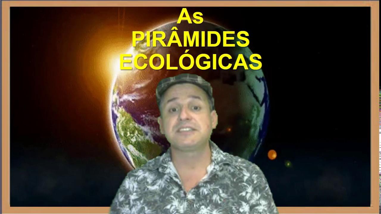 Ecologia - As Pirâmides Ecológicas