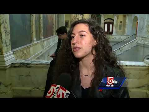 Students lobby for gun control bill in Massachusetts