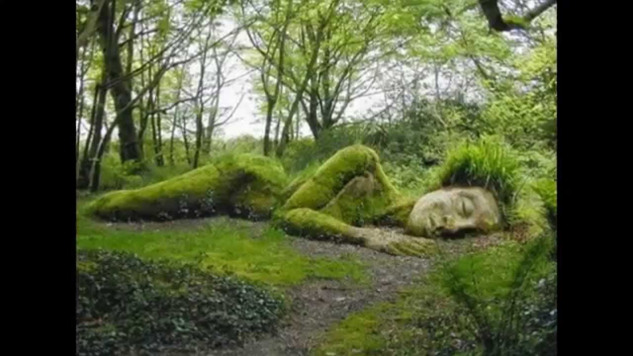 Lost gardens of heligan i giardini perduti di heligan for Depuratore acqua tartarughe