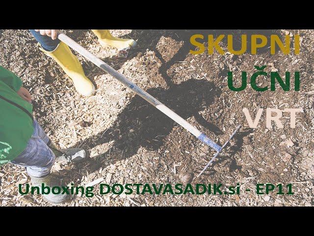 Kako sadimo šparglje, kaj je fizalis in triki | Skupni učni vrt pri kozolcu | EP11 / dostavasadik.si