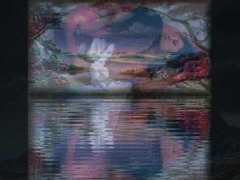 Stephan Remmler - Vogel der Nacht