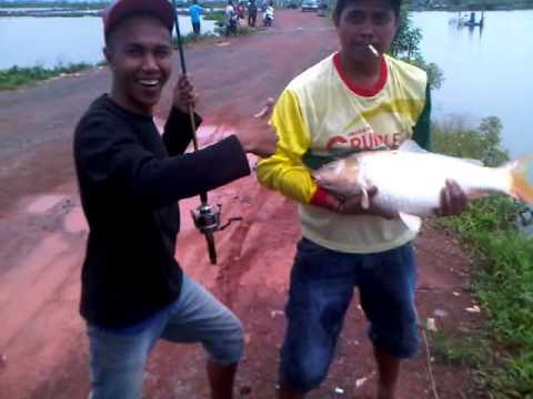 Mancing Mania Ikan Mas From Bjb Part 1 Youtube