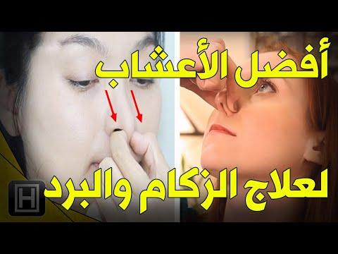 صحة الجهاز التنفسي والحساسية