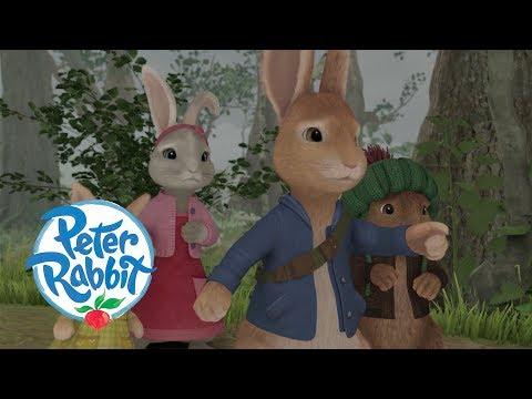 Peter Rabbit - The Disaster Trilogy | Cartoons for Kids