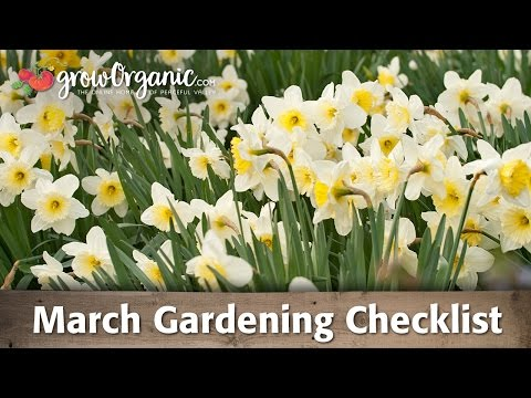 March Gardening Checklist: 9 Tips to Prepare Your Organic Garden for a Successful Growing Season